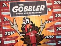 Gobbler-2016-16